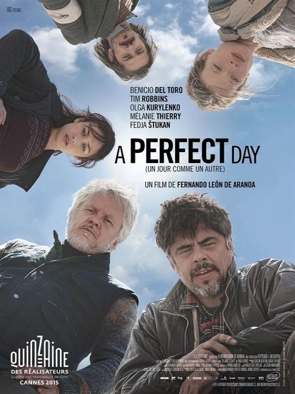 Affiche de A perfect day