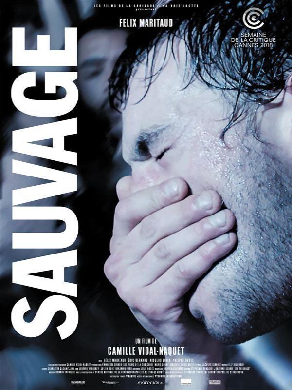 Affiche de Sauvage