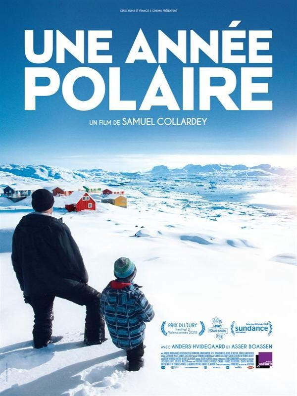 Affiche de Une année polaire